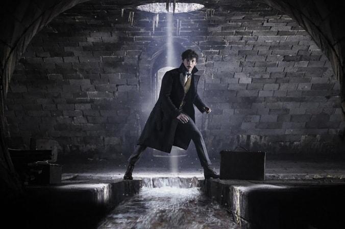 Les Animaux Fantastiques : Les Crimes de Grindelwald - Image - Image 10