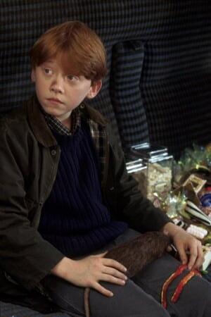 Harry Potter 1: à l'Ecole des Sorciers - Image - Image 19