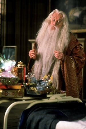 Harry Potter 1: à l'Ecole des Sorciers - Image - Image 5