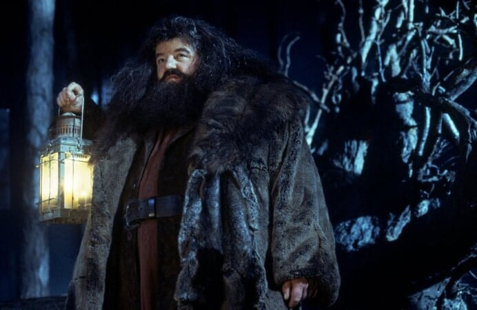 Harry Potter 1: à l'Ecole des Sorciers - Image - Image 13