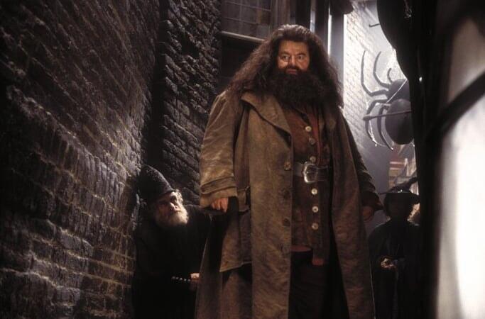 Harry Potter 2: et la Chambre des Secrets - Image - Image 21