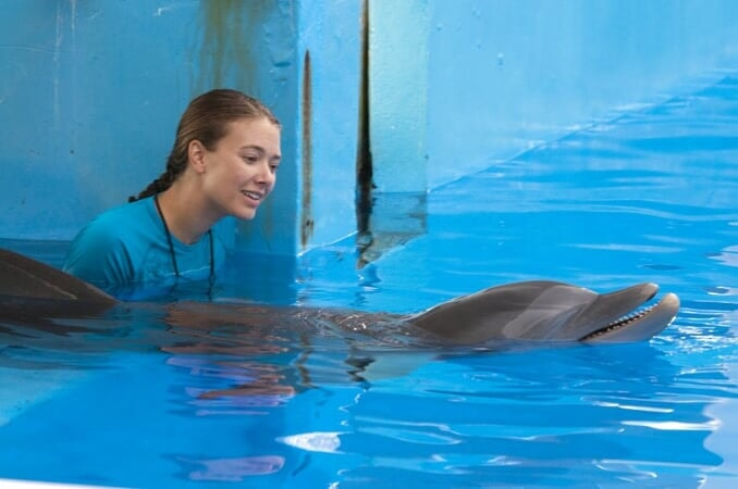 Dolphin Tale / Incroyable Histoire de Winter - Image - Afbeelding 17