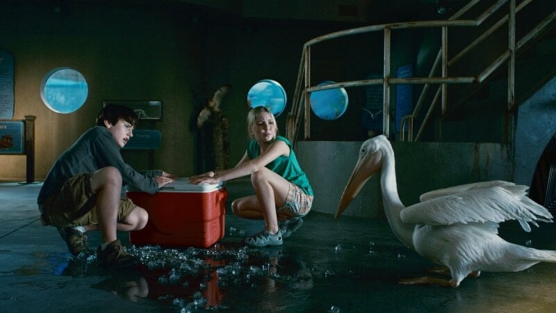 Dolphin Tale - Image - Image 23