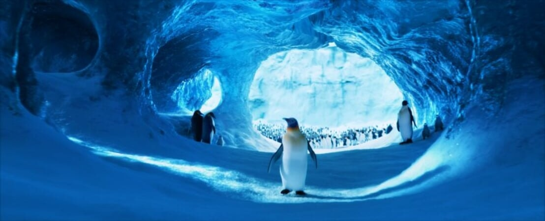 Happy Feet 2 - Image - Afbeelding 5