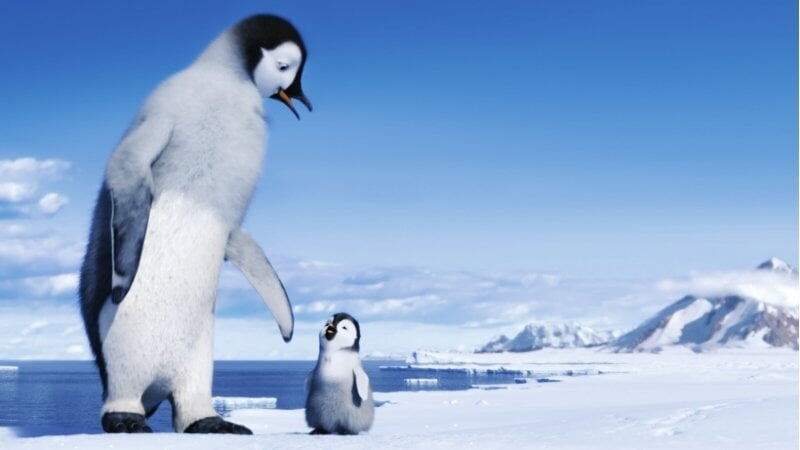 Happy Feet 2 - Image - Afbeelding 40
