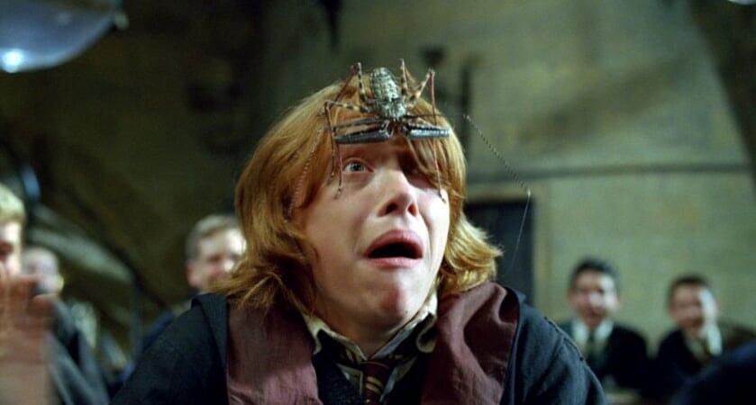 Harry Potter 4 : en de Vuurbeker - Image - Afbeelding 26