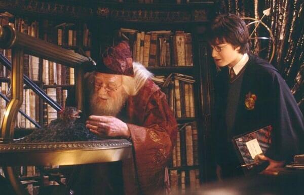 Harry Potter 2: et la Chambre des Secrets - Image - Image 28