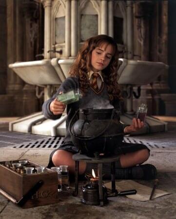 Harry Potter 2: et la Chambre des Secrets - Image - Image 5