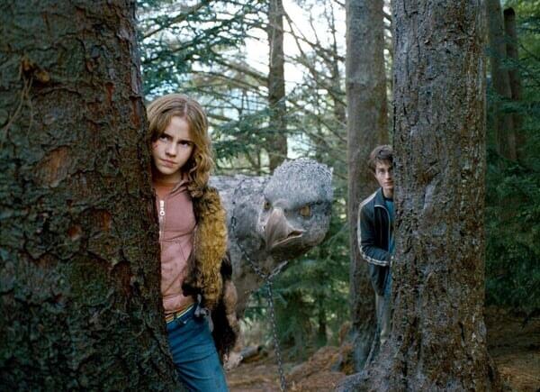 Harry Potter 3: et le Prisonnier d'Azkaban - Image - Image 27