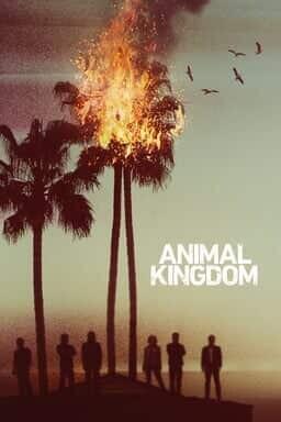 Animal Kingdom - Seizoen 1 - Key Art